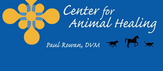 Center for Animal Healing